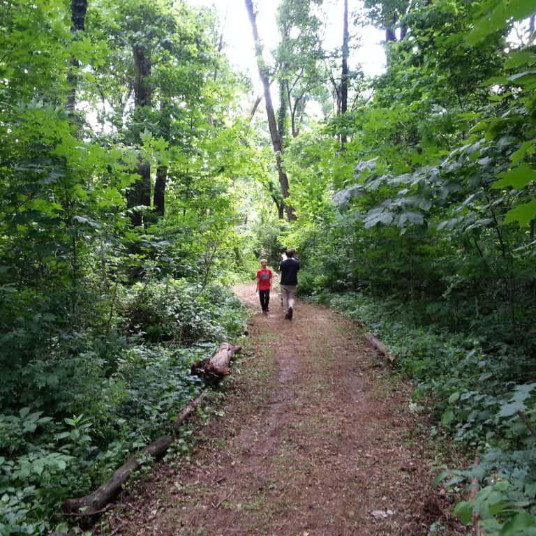Althouse Arboretum