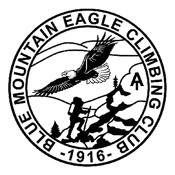 Blue MTN Eagle Climbing