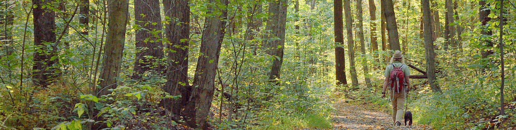 Hiker at French Creek